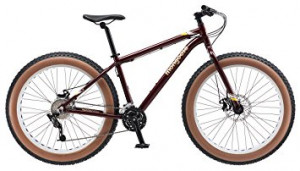 Vinson fat bike